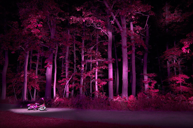 bildgabe-nachtfotografie-waldrand1